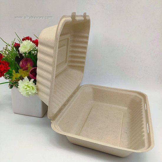 Biodegradable Natural Cutlery Bento Food Box Sugarcane Tableware Wholesale