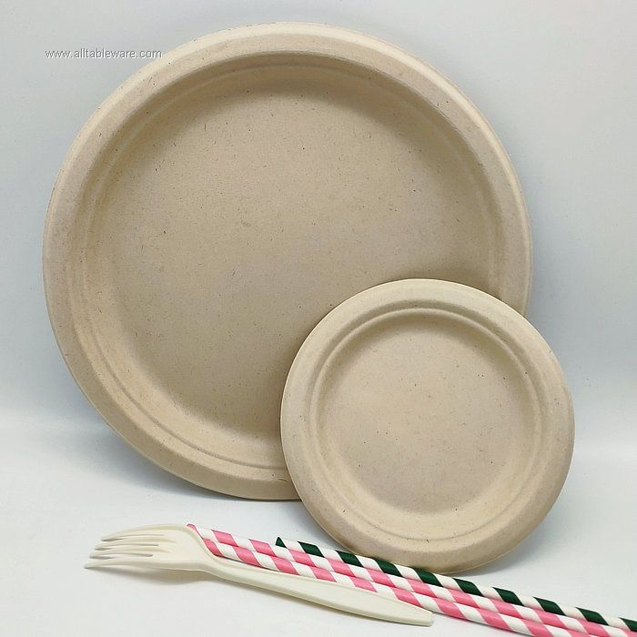 10 Inches Disposable Wheat Straw Round Plate