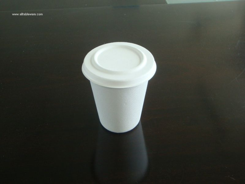 500ml sugarcane cup with lid