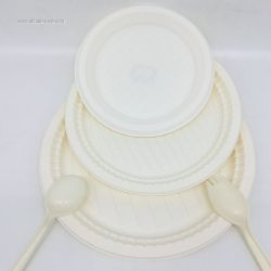 Biodegradable disposable corn starch plates supplier