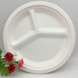 Biodegradable Compostable Disposable 9 Inch 3 Compartment Plate