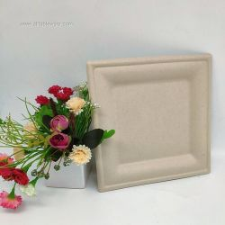 6 Inch Wholesale Natural Biodegradable Square Plate For Fruit