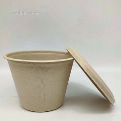 425ml Bagasse Paper Pulp Cup With Lids
