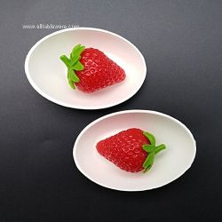 Top Quality Biodegradable Eco Friendly Mini Disposable Bagasse Sugarcane Plate