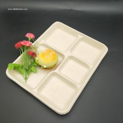 10X8'' 600ML 5 COMPARTMENT TRAY