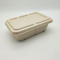 Disposable Biodegradable Bagasse Food Tray 750ml
